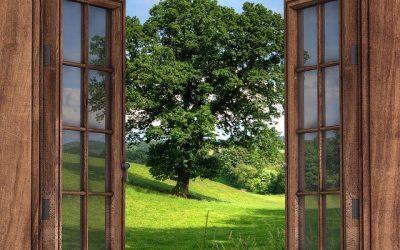 Touts les avantages d'une fenêtre en bois